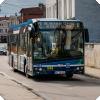 Funkcjonowanie komunikacji miejskiej w okresie wakacji